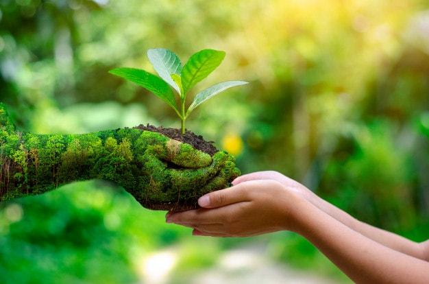 tips para cuidar nuestro entorno
